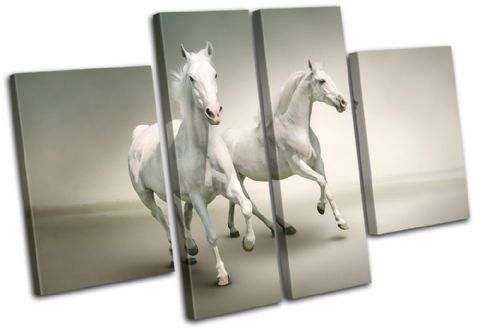 White Horses Animals - 13-0507(00B)-MP17-LO